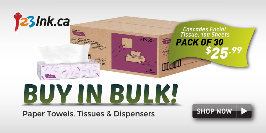 paper towels, tissue and depensers buy in bulk