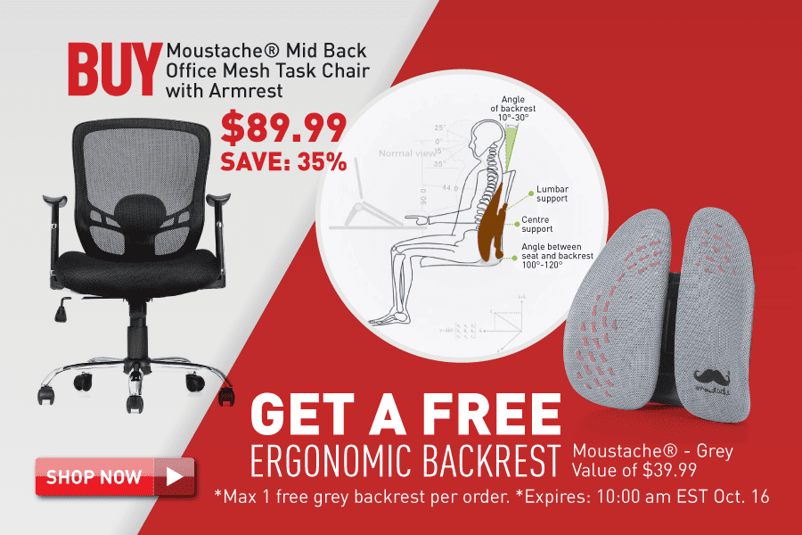 Buy office chair get ergonomic backrest free